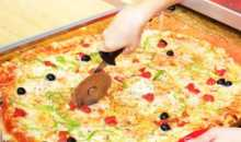 franquicias mr. pizza